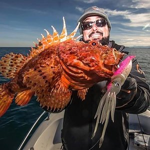 Vi har alt du trenger til fisketuren! Se vårt utvalg til enden av snøret