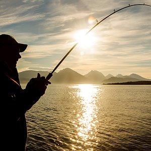 Ny fiskestang? Alle stenger opp til 33%